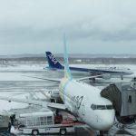 2月15日 大荒れの新千歳空港